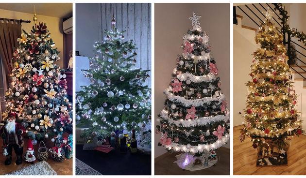 Najljepša božićna drvca naših čitatelja