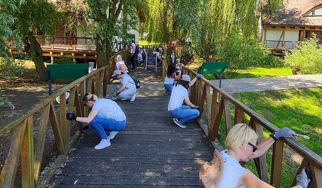 Zaposlenici HEP Opskrbe uredili dio šetnice Parka prirode Kopački rit