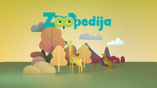Zoopedija