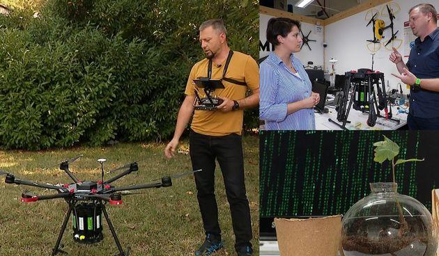 RTL Projekt Zeleno