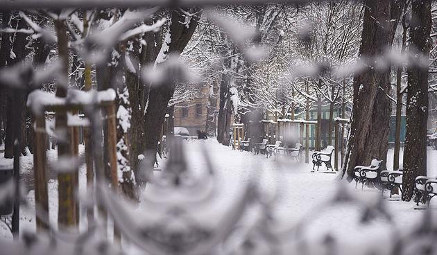 snijeg(30)