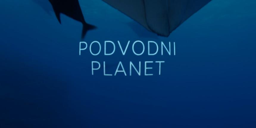 Od večeras na Kockici: Dokumentarna serija koja otkriva zadivljujuću ljepotu plavetnih dubina 'Podvodni planet'
