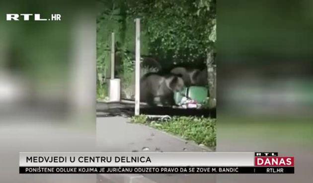 Medvjedi u centru Delnica (thumbnail)