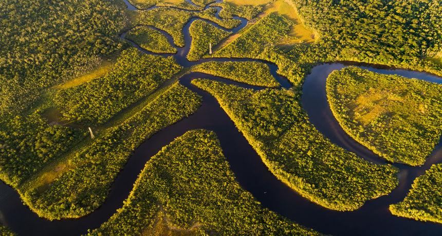 Amazonska prašuma ispustila više ugljikovog dioksida nego što ga je 'upila': 'Ne znamo kada će to postati put bez povratka'