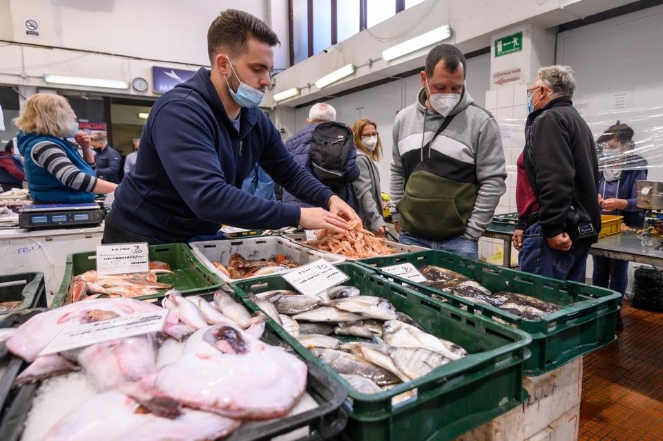 Bogata ponuda na zadarskoj ribarnici