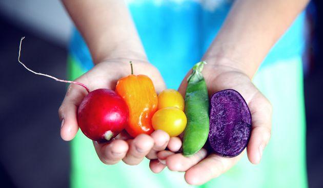 Izvučemo li najbolje od najboljih dijeta dobit ćemo izvrsne smjernice u prehrani