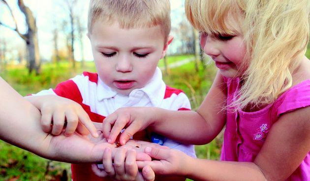 Zašto se mnoga djeca boje insekata?