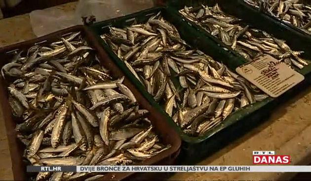 Imamo li dovoljno ribe u Jadranu i koliko je uopće pojedemo? (thumbnail)
