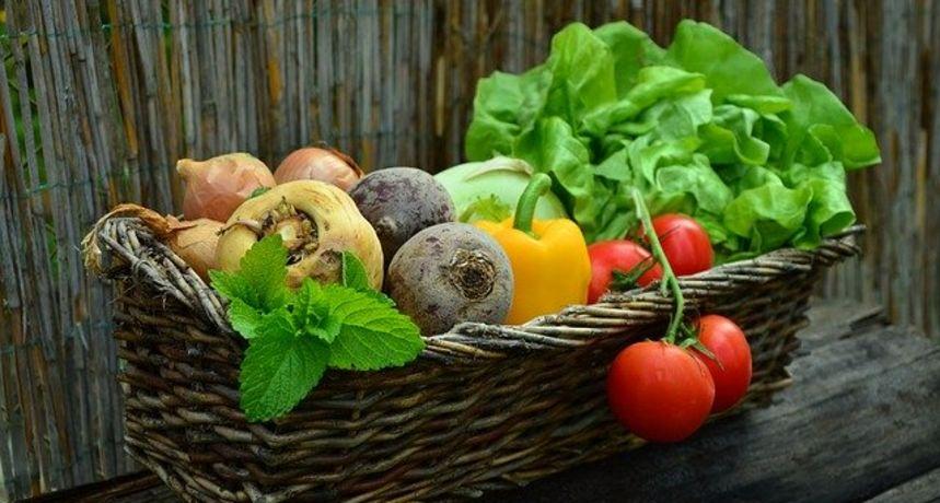 Ministrica poljoprivrede u Karlovcu: Udruženi proizvođači su snažniji, konkurentniji i otporniji na tržišne poremećaje