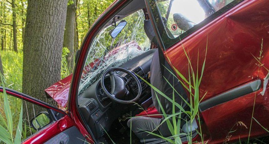 20-godišnji vozač teško ozlijeđen u prometnoj kod Generalskog Stola - u zavoju izletio s ceste i udario u stablo, nije bio vezan