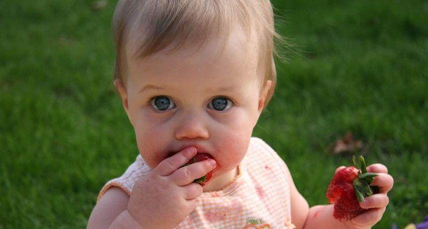 Koliko krute hrane trebaju jesti bebe u prvoj godini? Novo istraživanje iznenađuje