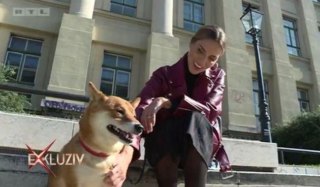 Koja+to+poznata+domaća+lica+priređuju+psima+raskošne+tulume?+(thumbnail)