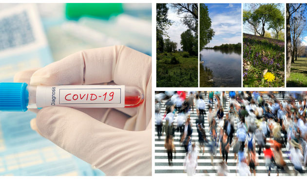 COVID priroda