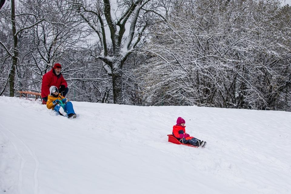 Osijek: Najmlađi iskoristili novi snijeg za sanjkanje u parku