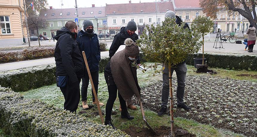 Karlovačko kazalište gostuje ove subote u Vinkovcima - dan prije zajednički će posaditi novo drvo kao znak prijateljstva