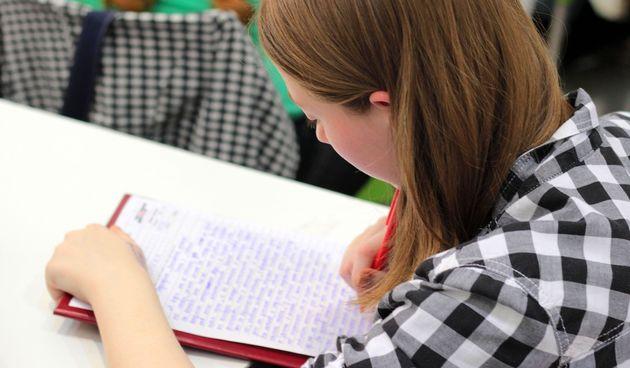 stipendija stipendije učenik učenica student