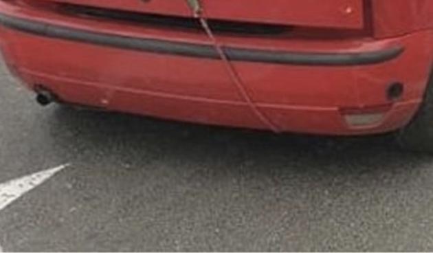 Imate mali auto, a trebate prevesti veliki bor? Pogledajte kako se ovaj Zagrepčanin sjajno snašao