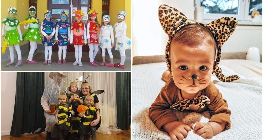 GRAD PRELOG 'Mala mica maca', '4 godišnja doba' te 'pčelarice i pčelar' pobjednici digitalnog Fašnjaka