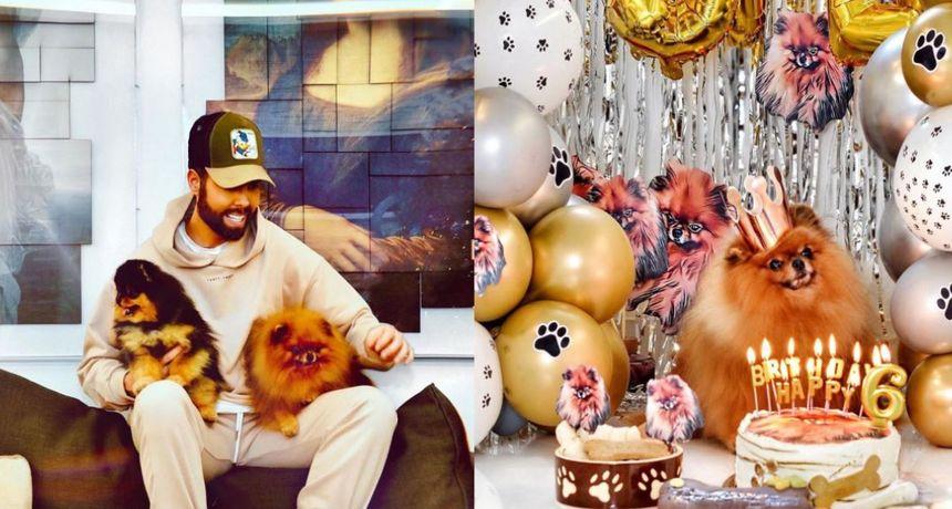 Pas koji živi bolje od većine Hrvata: Marko Grubnić svom pomerancu priredio raskošnu proslavu rođendana