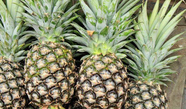 pineapple2901430960720