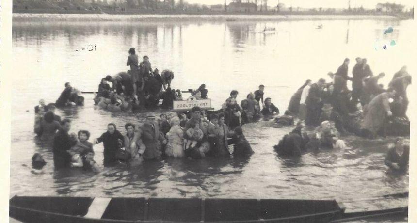 Tragedija na osječkoj kompi 1954. godine