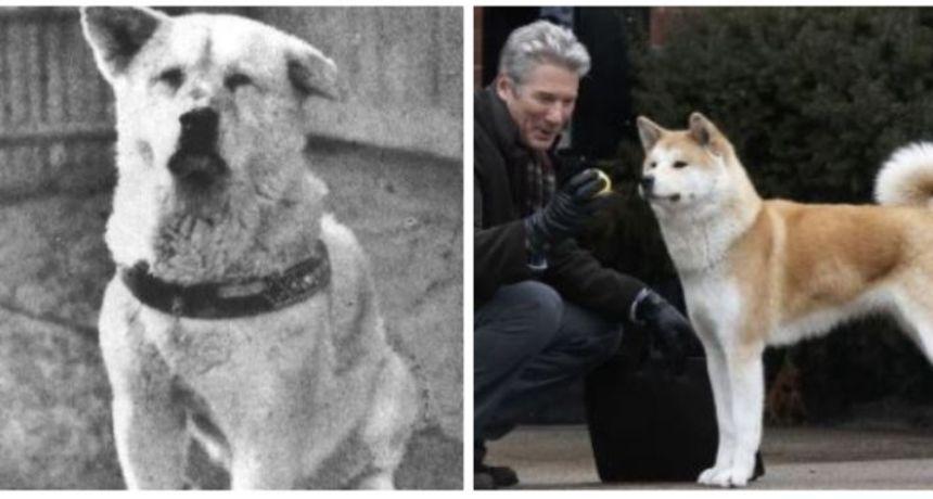 Istina o najodanijem psu: Hachikō je jedan od najpoznatijih ljubimaca u cijelom svijetu
