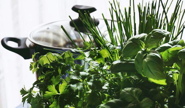 Ne samo što će obogatiti jela, već će ove biljke i dobro djelovati na zdravlje