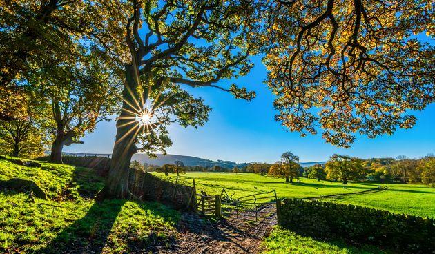 Priroda, poljoprivreda, zelenilo