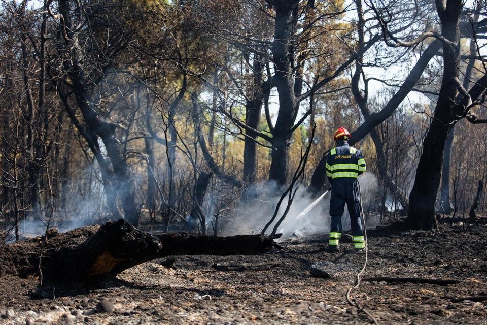 Požar u Ražancu stavljen pod kontrolu, vatrogasci i dalje na terenu