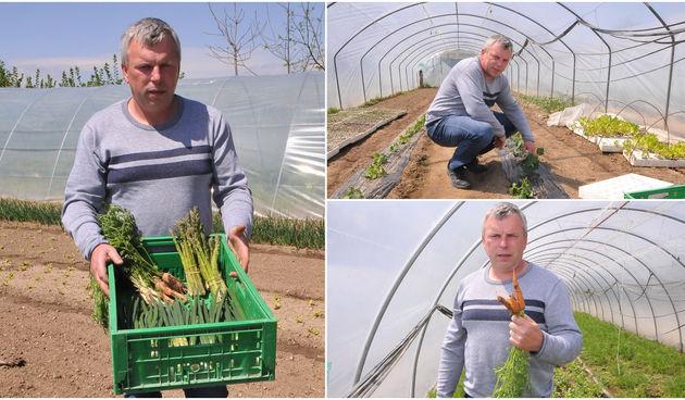 STRUKA I LJUBAV Povrtlar Krešo Kovačec: 'U mojem je vrtu sve domaće'