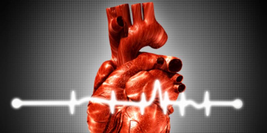 Ljudski otkucaji srca kucaju kao jedno dok slušamo istu priču. Stručnjaci otkrivaju kako je to moguće