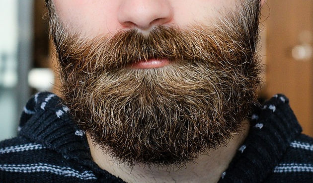 brada, brkovi
