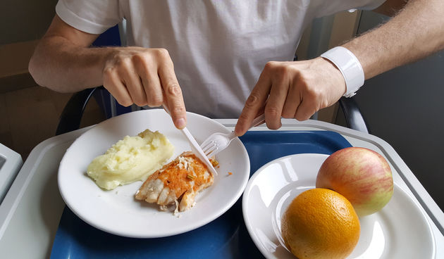 Bolnička hrana