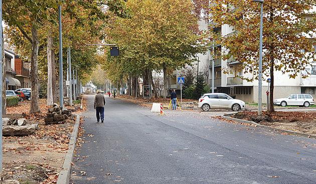 Zelenilo uklanja platanu u Marmontovoj, promet obilazno od srijede do petka, od 7 do 14 sati
