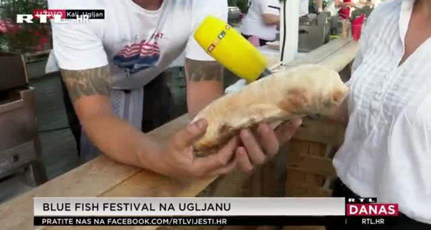 Blue fish festival na Ugljanu (thumbnail)