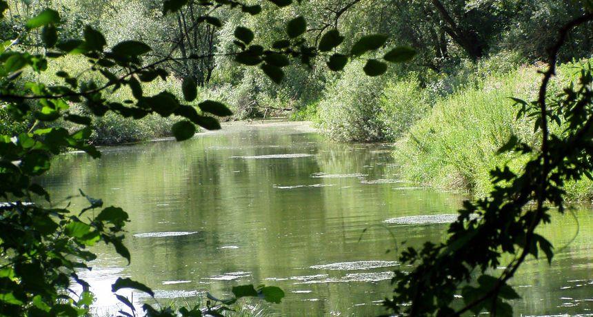 UNESCO proglasio Prekogranični rezervat biosfere Mura-Drava-Dunav, prvi u svijetu petodržavni rezervat biosfere