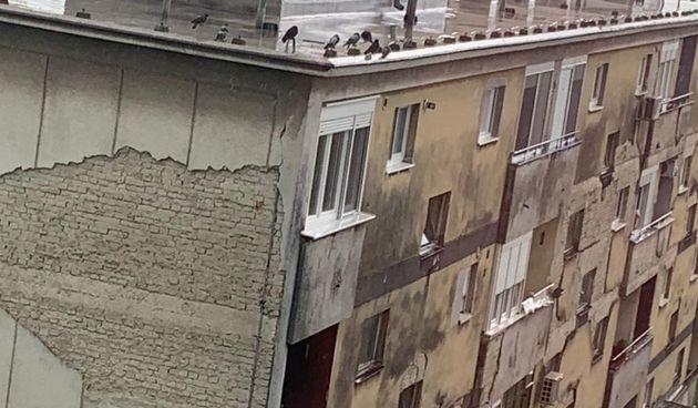 Romantika nije mrtva: Plakat 'Janje moje udaj se za mene' osvanuo na Sigečici u Zagrebu