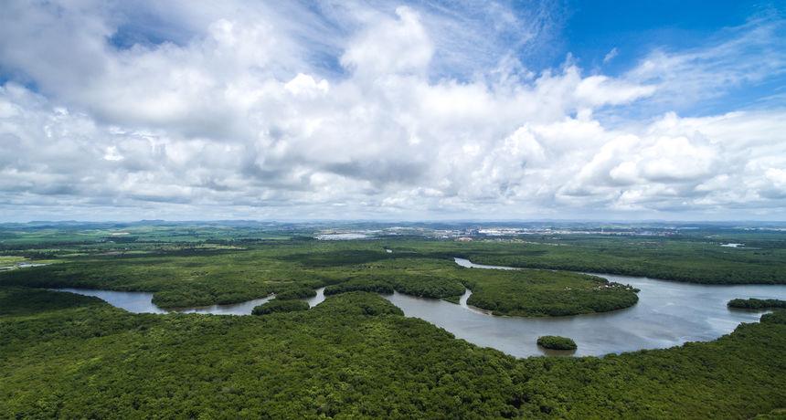 Degutantno: Parcele brazilske prašume Amazone ilegalno se prodaju na Facebooku